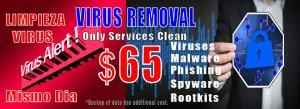 virus-removal-houston